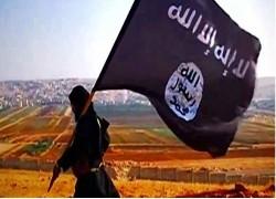 দায়েশের হুমকি দূর করতে আফগানিস্তান সফল হয়েছে: এনএসএ