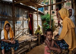 Myanmar continues to deny Rohingya rights