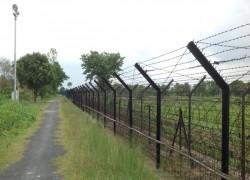 সীমান্তে বিএসএফ'র গুলিতে তিন দিনে সাত বাংলাদেশি নিহত