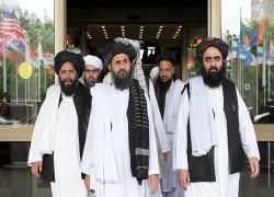 Taliban slams US for stalling peace talks