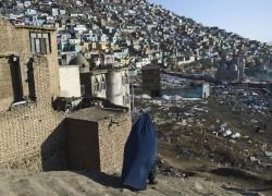 2,200+ killed in Afghan rebuilding outside combat