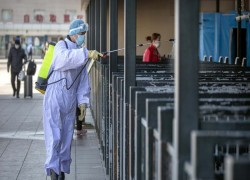 Slowed by the Coronavirus, China Inc. Struggles to Reopen