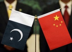 CHINA TO LEND PAKISTAN SUPPORT FOR COMBATING LOCUSTS