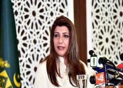 পাকিস্তানের শঙ্কা: দক্ষিণ এশিয়াকে অস্থিতিশীল করবে ভারত-যুক্তরাষ্ট্র প্রতিরক্ষা চুক্তি