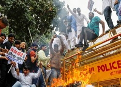 Over 2,000 outsiders occupied 2 schools to carry out Delhi riots: Report