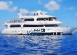 COVID-19: Yachts, safaris restricted from entering Maldives