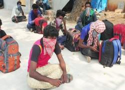 Coronavirus: Tamil Nadu man's 500-km walk amid lockdown becomes his last