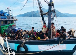 382 starving Rohingya rescued after 58 days at sea