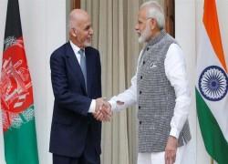 US-Taliban deal limit India's leverage in Afghanistan!
