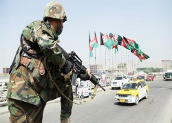 NATO withholds key information on Taliban attacks: US watchdog