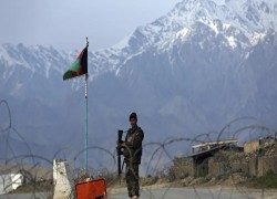 Afghan govt releases 1,000 Taliban members: Security Council