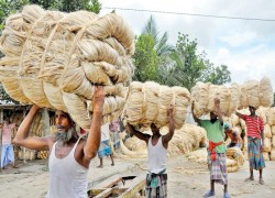 India plans to slap countervailing duty on Bangladesh jute goods
