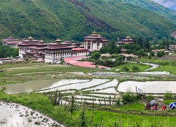 High prevalence of corruption in public service delivery in Bhutan: Report