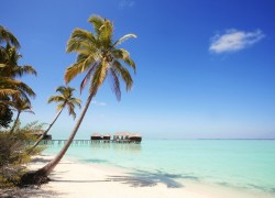 Restrictions on travel, prayers ease as Maldives moves to