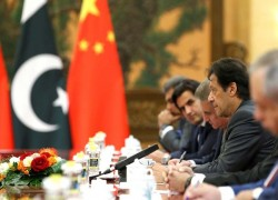 CHINA TO HELP PAKISTAN SET UP PHYTOSANITARY FACILITY