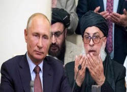 Russo-Taliban ties: Did the Russians really offer bounty for the Americans?