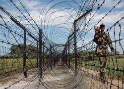 'BSF MEN PICK UP, TORTURE, SHOOT DEAD BANGLADESHI'