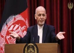Afghanistan seeks regional support for peace