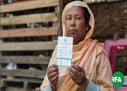 Rohingya-based party urges Myanmar to allow Muslim minority to vote and run for office