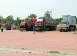 OVER 14 VEHICLES FULL OF AFGHAN DRIED FRUIT ARRIVES IN INDIA