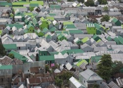 WHY ARE SOME OF THE HOUSES IN KORAIL SLUM GREEN?