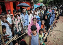 For Myanmar's elections to be free and fair Rohingya must get the right to vote