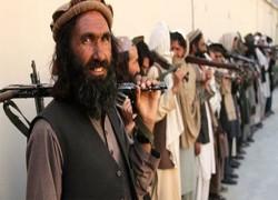 ছেড়ে দেয়া তালেবান সদস্যদের আবারো আটক করছে আফগান সরকার