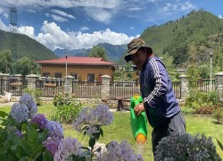 Royal Bhutan Flower Exhibition to open by August 14 in Haa