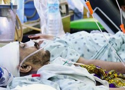 80 CIVILIANS KILLED IN LAST SEVEN DAYS: GOVT DATA
