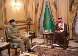 COAS, KSA DEPUTY DEFENCE MINISTER HOLD TALKS