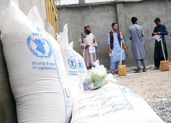 16 MILLION AFGHANS IN NEED OF HUMANITARIAN AID: WFP