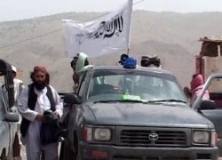 GOVT FORCES REPORT FOREIGN FIGHTERS AMONG TALIBAN
