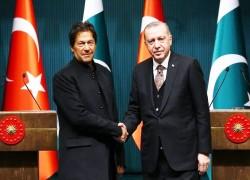 Turkey's tilt toward Pakistan provokes India's ire