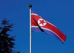 NORTH KOREA NUCLEAR ACTIVITIES