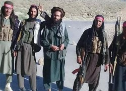 KEY TALIBAN COMMANDER KILLED IN AFGHAN FORCES OPERATION