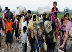 MYANMAR QUESTIONED FOR NOT FULFILLING ROHINGYA REPATRIATION PLEDGE