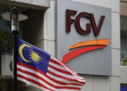 Malaysia says palm oil giant FGV to face action over forced-labour issues in wake of US import ban