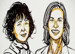 রসায়নে নোবেল পেলেন ২ নারী, ক্যানসার ও জিনগত রোগ নিরাময়ে আরও একধাপ অগ্রগতি