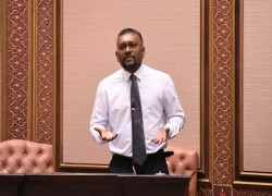 Maldives' econ minister does not support China-Maldives FTA