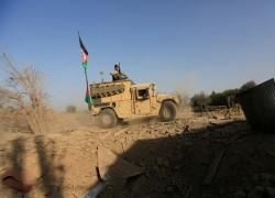 আফগানিস্তানে নিরাপত্তা বাহিনীর অভিযানে ৭০ তালেবান নিহত