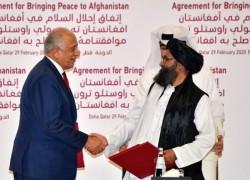 আফগানিস্তানে সহিংসতা কমাতে তালেবান রাজি, বললেন মার্কিন দূত