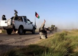 TALIBAN ATTACKS SPAN 24 PROVINCES IN PAST 24 HOURS: MOD