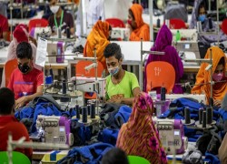 EUROPEAN PARLIAMENT MEMBER URGES TO STOP BUYING RMG PRODUCTS FROM BANGLADESH