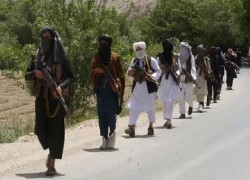 UN OFFICIAL SAYS TALIBAN MAINTAINS TIES WITH AL-QAEDA