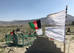 Violence expands to 28 Afghan provinces as talks face delay