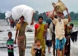 42 BANGLADESHI NATIONALS SENT BACK FROM ASSAM