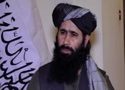 TALIBAN REJECTS AL-QAEDA PRESENCE IN AFGHANISTAN