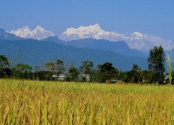 Snow-capped mountains as seen from Chitwan, Nepal