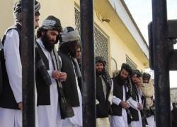 TALIBAN PRISONERS HAVE RETURNED TO BATTLEFIELDS: GOVT