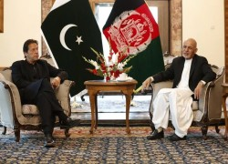 Afghanistan seeks Pakistan's support for cease-fire